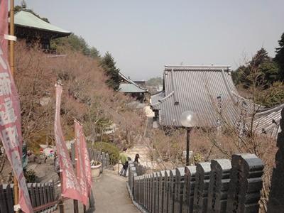 大聖院 (9).JPG