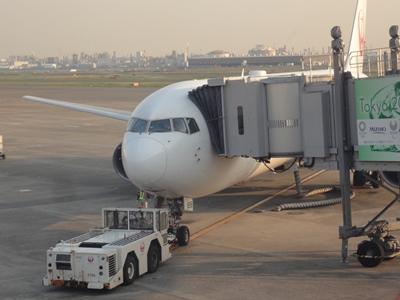 羽田-函館JAL (1).JPG